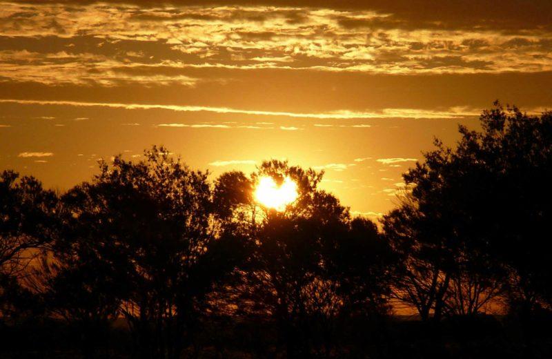Sunset, Paroo-Darling National Park.
