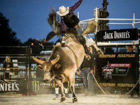 Outdoor Bull Ride