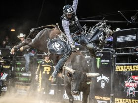 THE PBR RETURNS