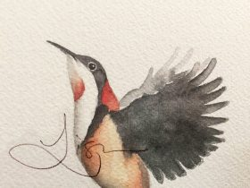 Pebbles and Pods original watercolour Eastern Spinebill
