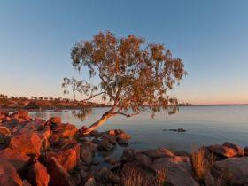 Peery Lake at dawn
