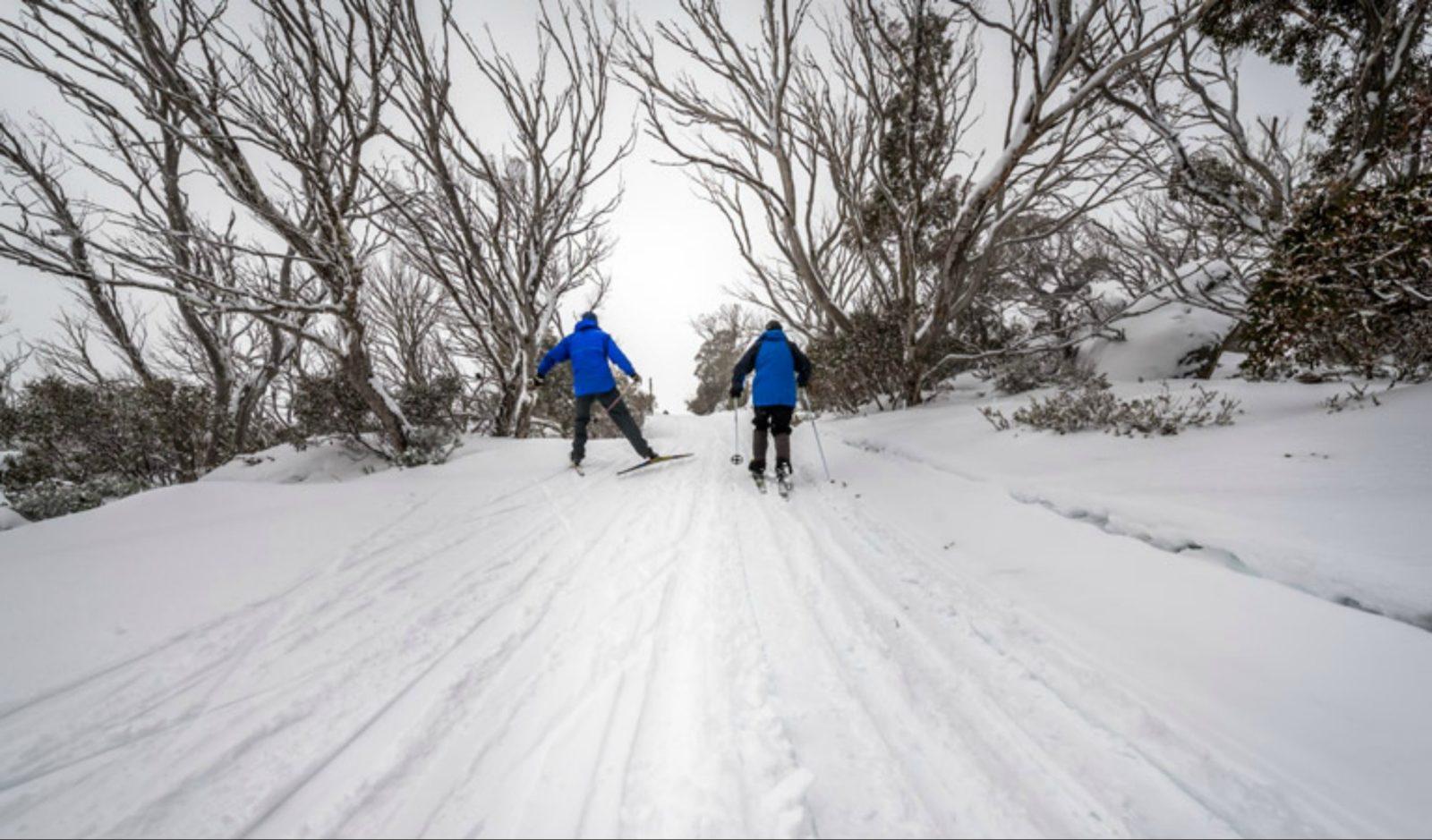 Perisher Range cross-country ski trails