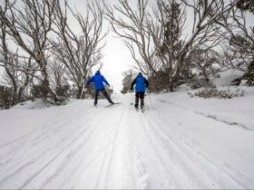 Perisher Range cross-country ski trails