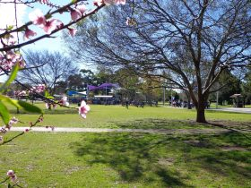 Koshigaya Park Campbelltown