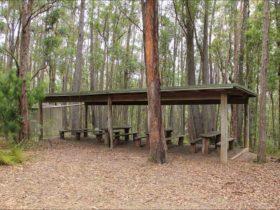 Pigeon House Mountain Didthul picnic area