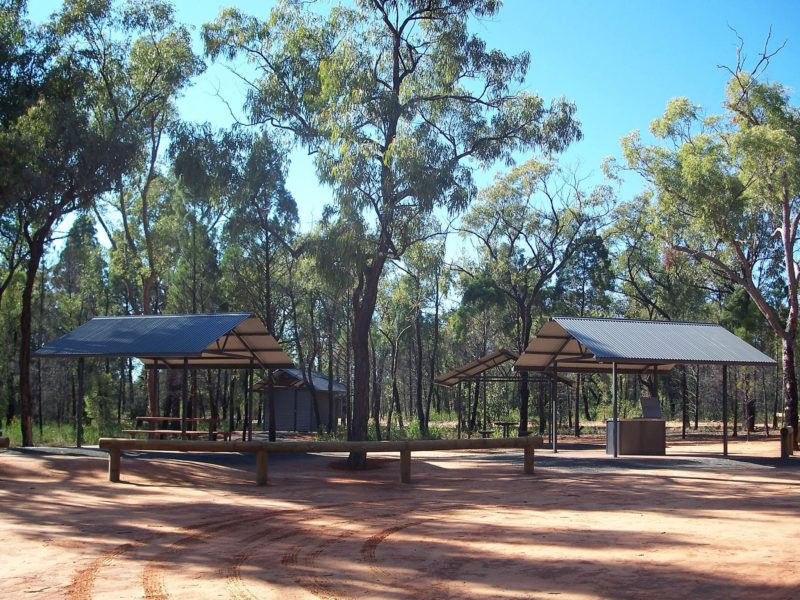 Pilliga Forest Lookout Tower