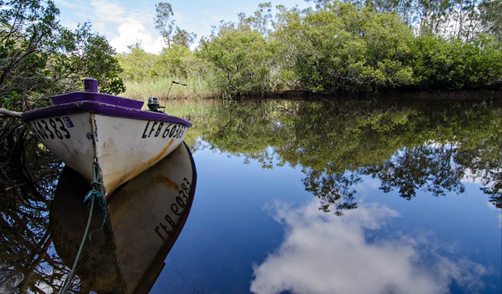 Pipers Creek picnic area, Myall Lakes National Park. Photo: John Spencer/NSW Government