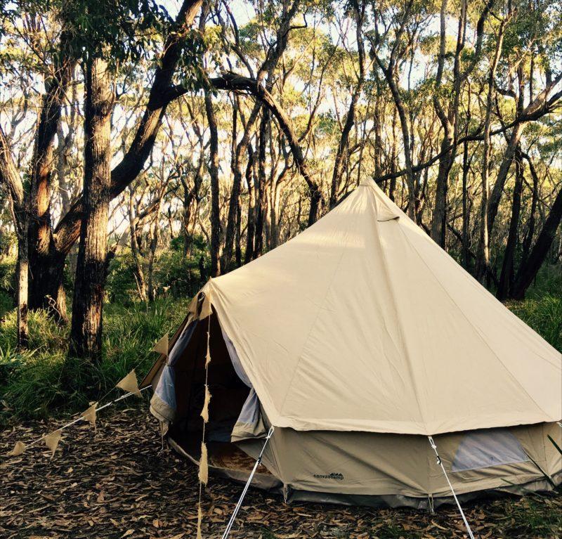 Glamping tent, gumtrees,