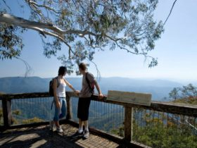 Point lookout, New England National Park. Photo: G Coles/NSW Government