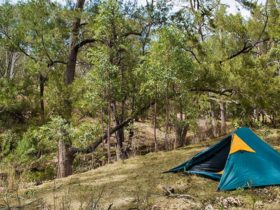 Policemans Point Campground