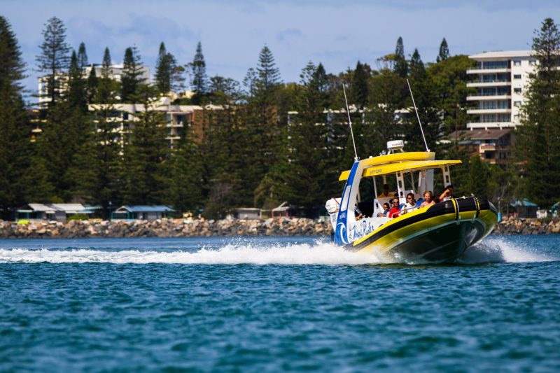 Wave Rider roaring down the Hastings River