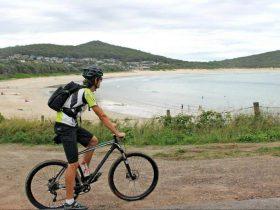 Port Stephens Mountain Bike Adventures