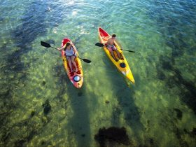 Port Stephens Paddlesports: Kayak and Paddle Board Hire