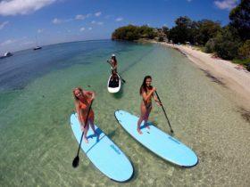 Girls SUPing at beautiful Dutchies Beach NSW Australia.