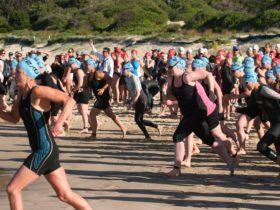 Swim Start Port Stephens