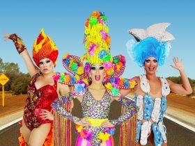 Performers in drag