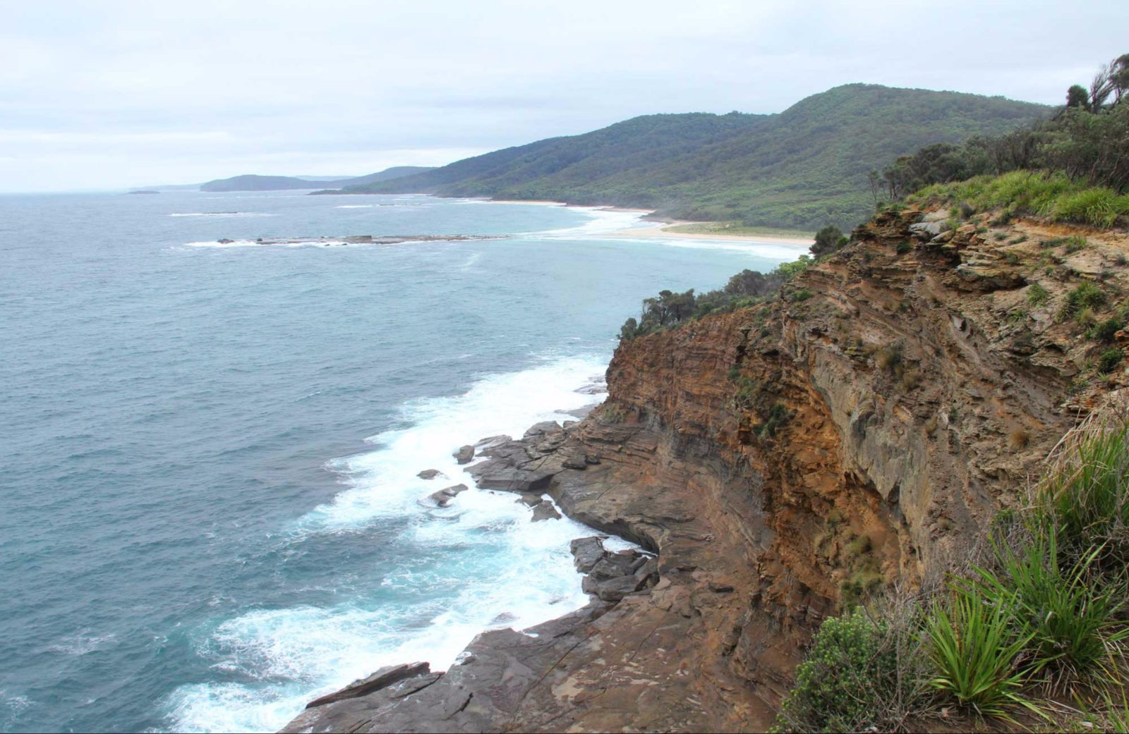 Pretty Beach to Snapper Point Walking Track. Photo: John Yurasek/NSW Government.