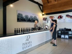Pokolbin Tasting Room Hunter Valley