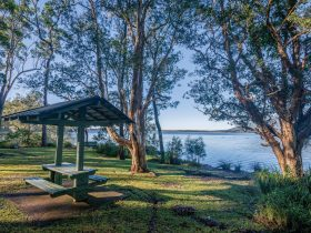 Queens Lake Nature Reserve Picnic Area