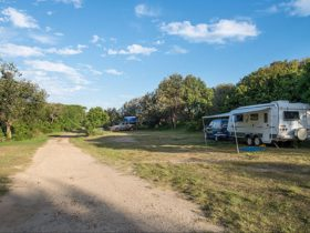 Racecourse campground, Goolawah National Park. Photo: John Spencer