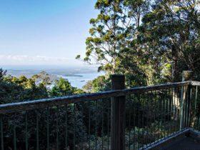 Rainforest loop, Dooragan National Park. Photo: John Spencer/NSW Government
