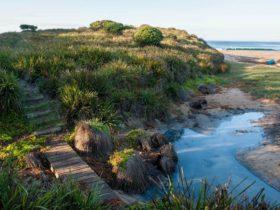 Richmond Beach, Murramarang National Park. Photo: Michael Van Ewijk