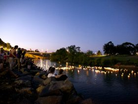 Maitland Riverlights