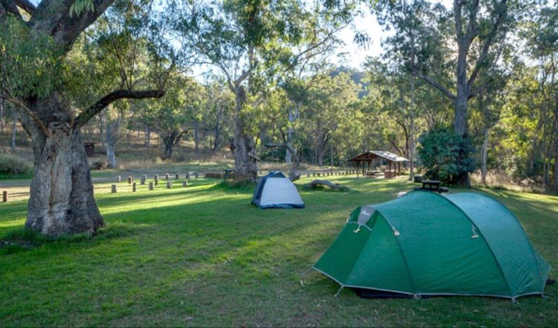 Tents at Riverside campground, Oxley Wild Rivers National Park. Photo: Gerhard Koertner