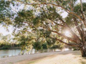 Riverside: Wagga Beach - Beach frontage + riverbank