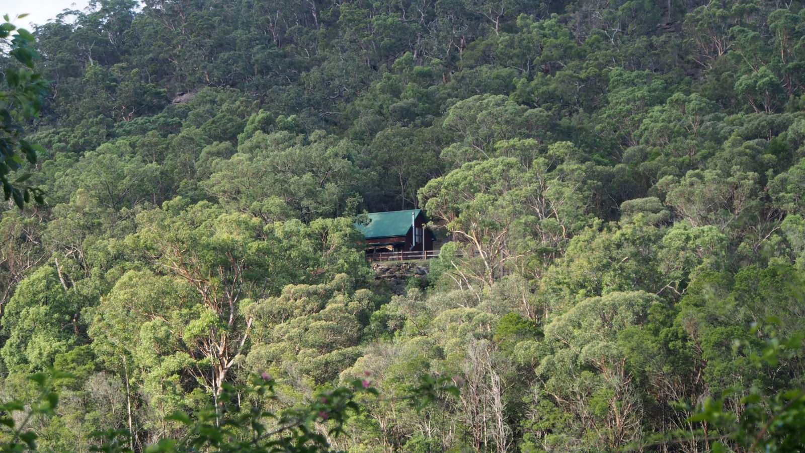 Riverview Nature Retreat, Hawkesbury River Holiday Accommodation