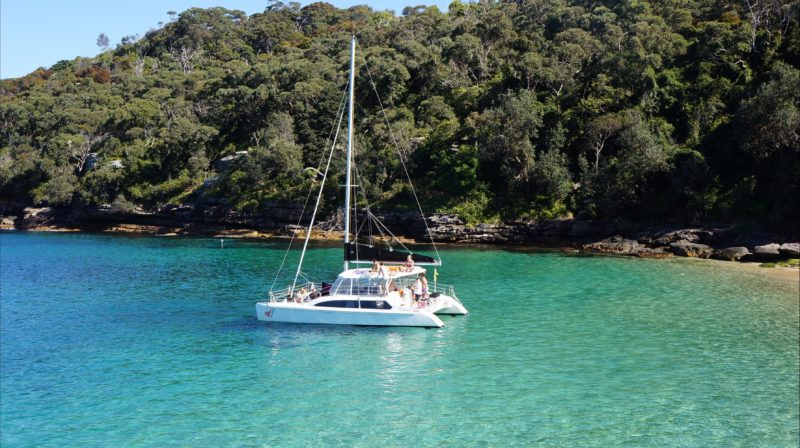 Rockfish Catamaran on Sydney Harbour