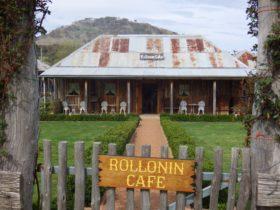 Rollonin Cafe