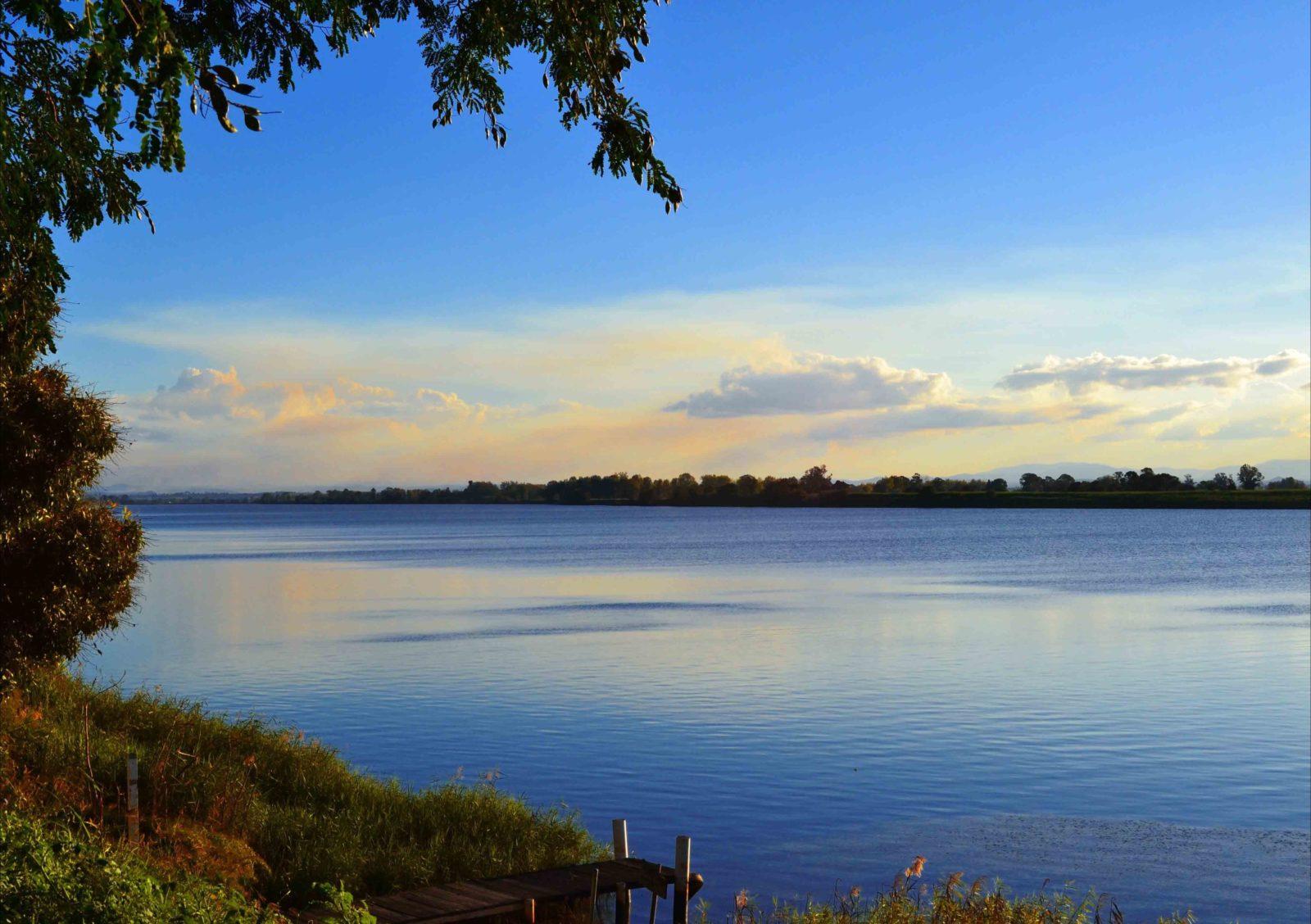 Ulmarra River