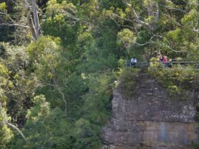 Vanimans Lookout, Round Walking Track, Blue Mountains National Park. Photo: Steve Alton.