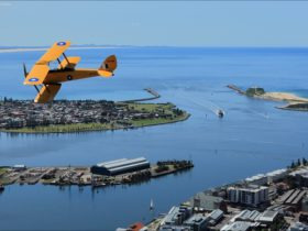 Tigermoth over Harbour