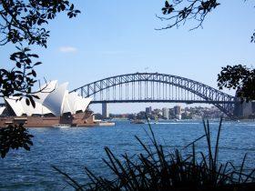 Sydney City Sights Tour