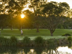 Ryde-Parramatta Golf Club