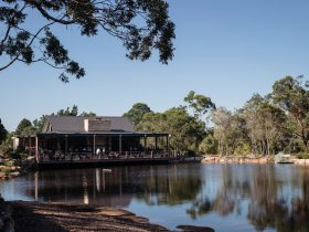 Guests enjoying scenic views and drinks at Saddles restaurant and bakehouse in Mount White