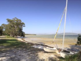 Sailing Club picnic area