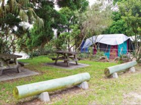 Picnic tables and tent in Sandon River campground. Photo: Rob Cleary