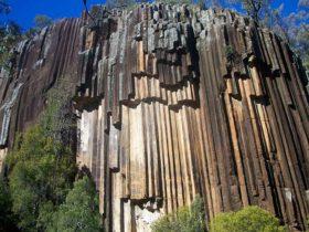 Sawn Rocks picnic area, Mount Kaputar National Park. Photo: Ian Smith