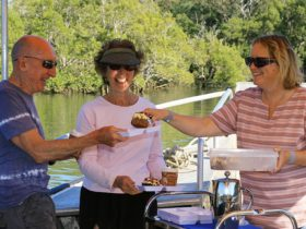 Scenic eco cruise - coffee, cake and culture