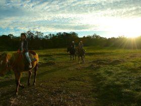 Horseriding at Sundown