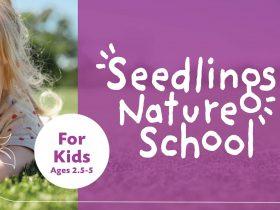 Seedlings Nature School
