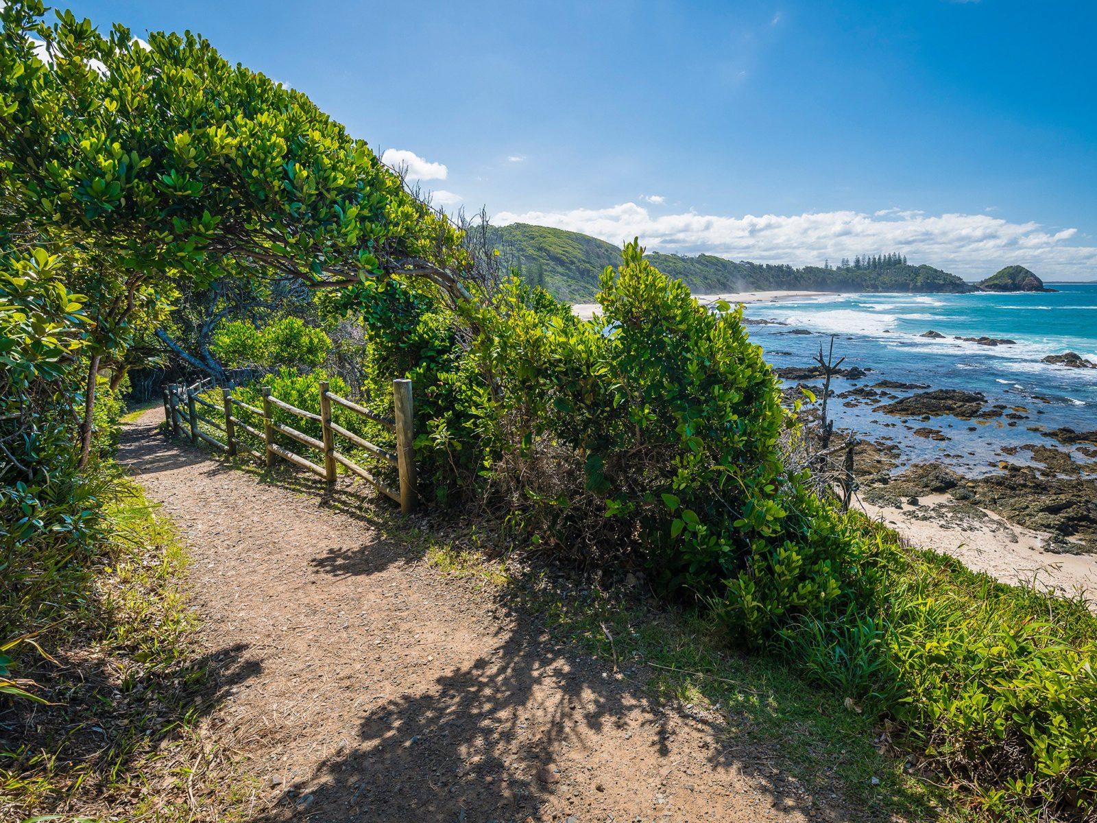 Shelly Beach Coastal Walk