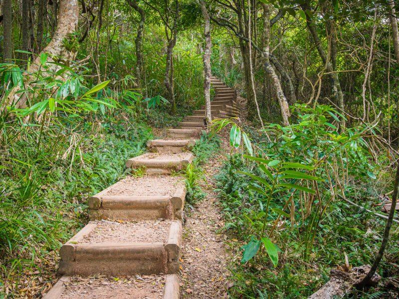 Shelly Beach Coastal Walk Stairs