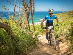 Mountain biker in front of ocean views.