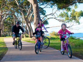 Shoalhaven Bike Hire