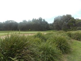 Shoalhaven Heads Golf Club