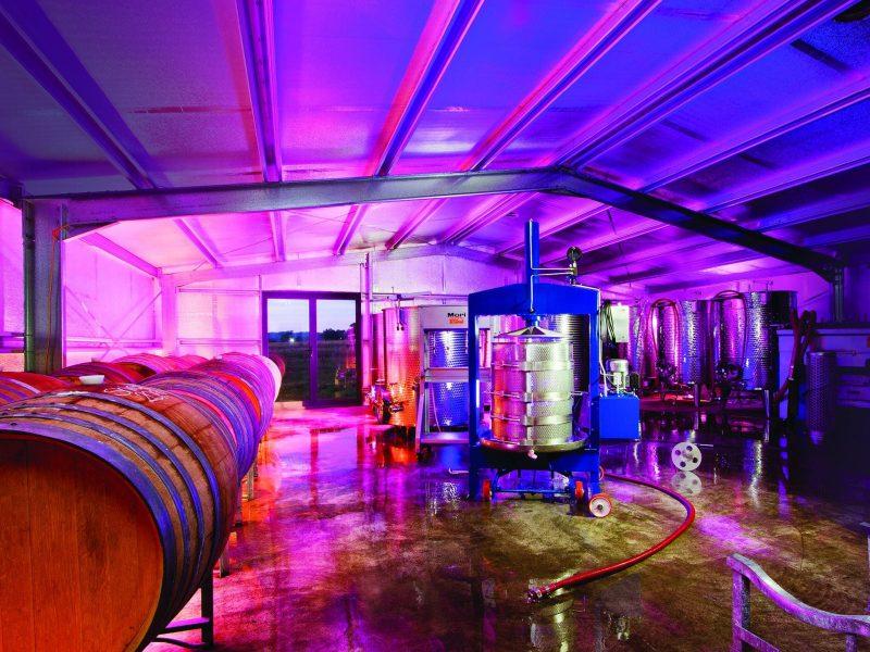 SHORT SHEEP Micro-Winery